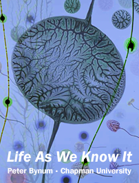 life-as-we-know-it_cover